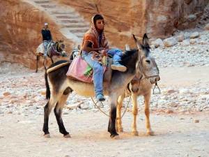 Jordanien | Ein Junge wartend auf dem Rücken seines Esels sitztend. Esel dienen als Shuttle-Service in Petra