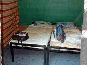 Jordanien | Unsere Betten im Beduinencamp im Wadi Rum. Zwei einfache, aber komfortable und saubere Matratzen mit Bettwäsche auf einem eisernen Bettgestell im Zelt aus Planen