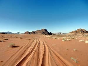 Jordanien | Spuren im roten Sand des Jeaps bei unserer Wadi Rum Tour mit Bedouin Directions