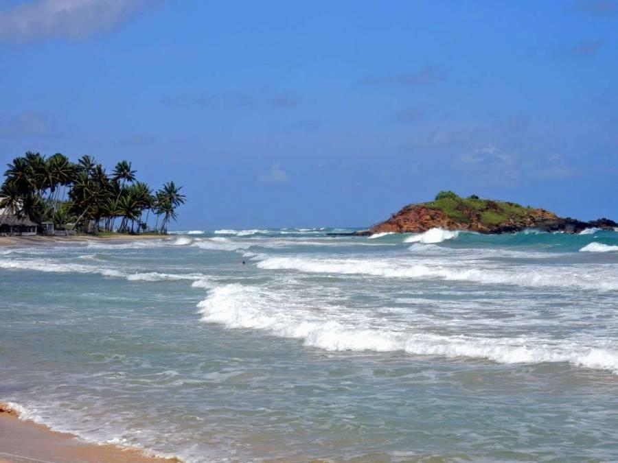 Sri Lanka | Blick auf den palmengesäumten Mirissa Beach bei starker Meeresbrandung