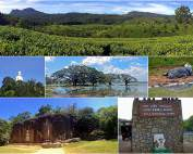Sri Lanka |Eindrücke auf der Rundreise im Zentralland: Teeplantagen bei Haputale, Kandy, Tissa Wella und Yala Nationalpark. Tipps & interessante Orte sind in unserem Artikel