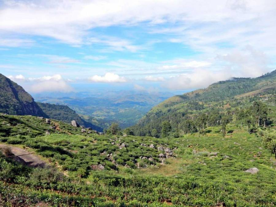 Sri Lanka   Blick in Richtung Südküste von der Dambatenne Teefabrik außerhalb von Haputale