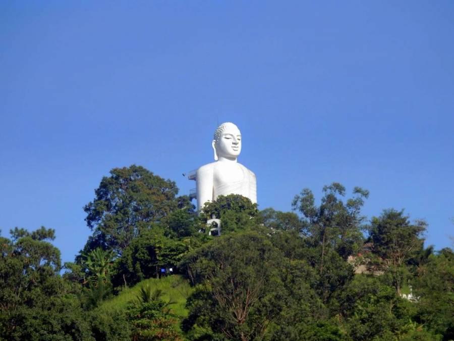 Sri Lanka   Auf einem Hügel in Kandy thront eine große schneeweiße Buddha Statue