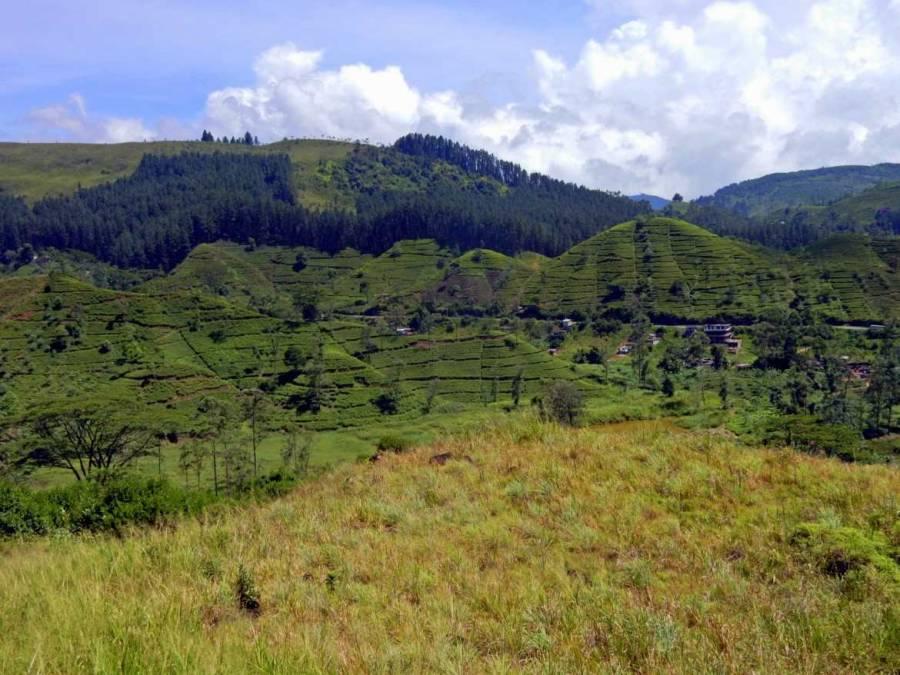 Sri Lanka | Panoramablick aus dem Zug auf das satte Grün des Hochlands entlang der Bahnstrecke