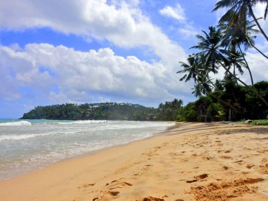 Sri Lanka | Mirissa Beach, einer der schönsten Strände der Westküste vor perfekter Palmenkulisse