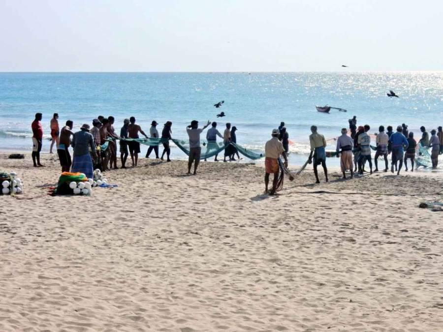 Sri Lanka | Sri Lanka | 20-30 Fischer von Trincomalee holen am Strand das Netz ein