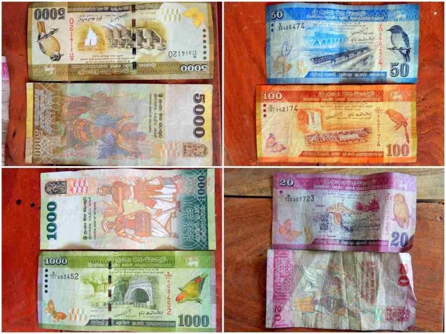 Sri Lanka | Die Währung heißt Rupie und besteht aus kunterbunten Geldscheinen. Hier die Geldscheine von 20 - 5000 Rupien in der Übersicht. Beachte unsere Tipps zum kostenlosen Geld abheben in Sri Lanka