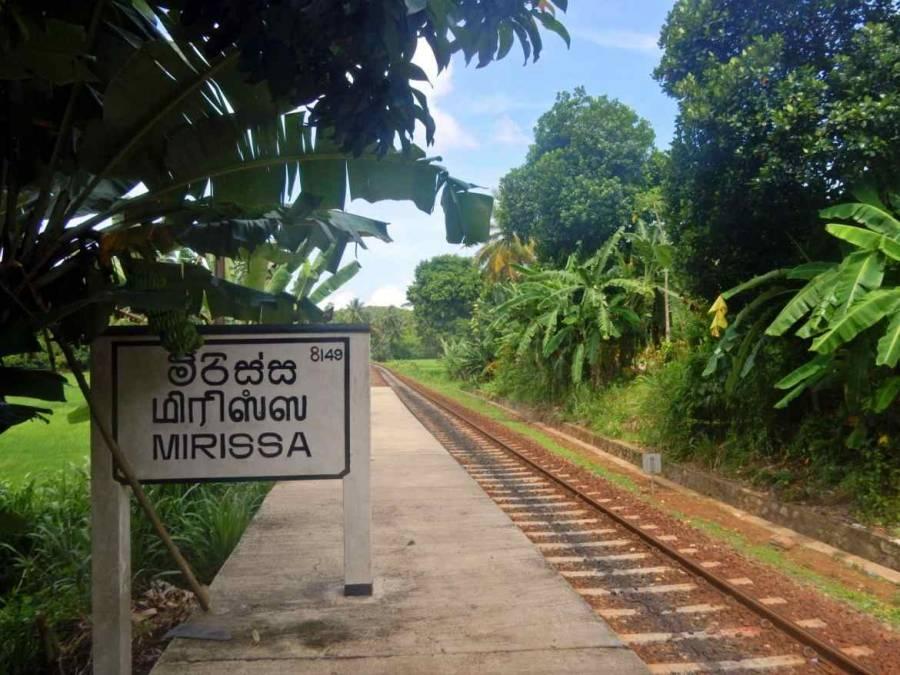 Sri Lanka | Der in Reisfeldern versteckte Bahnhof von Mirissa eingebettet in das Immergrün des Tropenparadieses