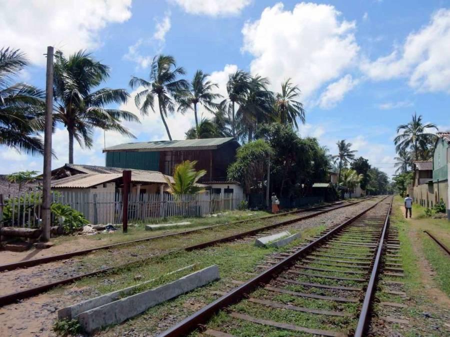 Sri Lanka | Bild der von Palmen gesäumten Bahnstrecke direkt am Meer in Colombo Mount Lavina