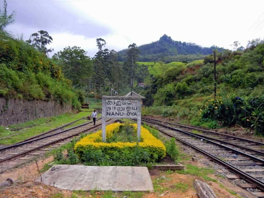 Sri Lanka   Bild des idyllischen Bahnhofs von Nanu Oya im grünen Hochland Sri Lankas