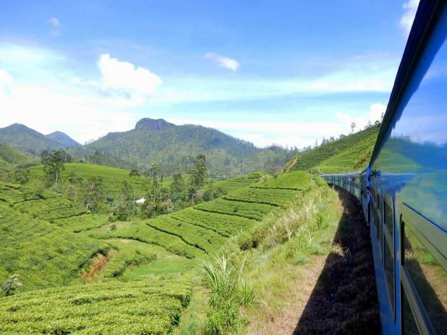 Sri Lanka | Ein blauer Dieselzug rattert durch die immergrünen Teeplantagen des Hochlandes von Kandy nach Ella. Die Fahrt gehört zu unseren Tipps zum Zug fahren auf Sri Lanka
