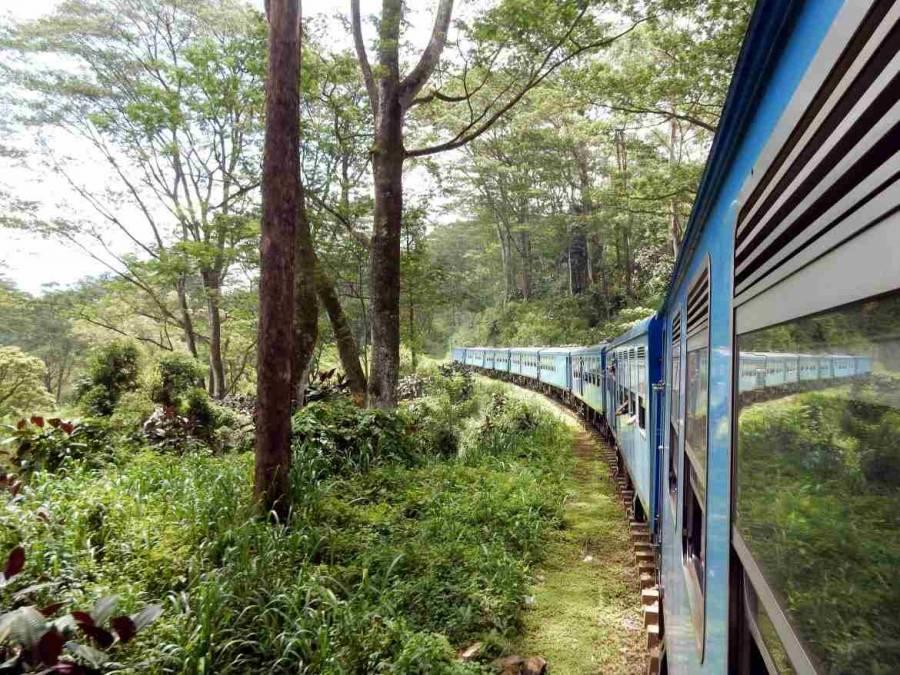 Sri Lanka | Zugfahrt durchs märchenhafte immergrüne Hochland. Ein strahlend blauer Zug bahnt sich seinen Weg durch das Regenwald-Dickicht der Berge.
