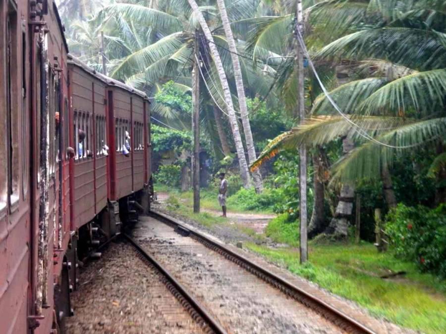 Sri Lanka | Zugfahrt durchs zentrale Hochland. Ein alter roter Dieselzug bahnt sich seinen Weg entlag der palmengesäumten Gleise