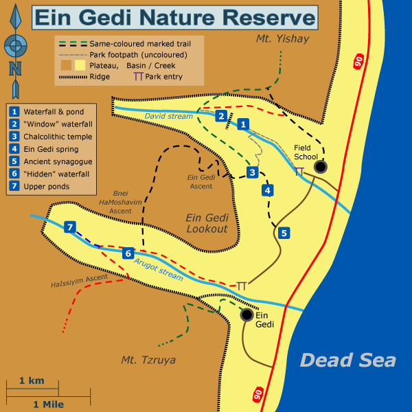 """Ein Gedi Nature Reserve Scheme en"" by Tamuz - Own work. Licensed under CC BY-SA 3.0 via Wikimedia Commons."