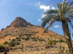 Jesus Trail | Blick auf den Berg Arbel von unten, eine Palme rechts als Kontrast zu ausgetrockneten Landschaft