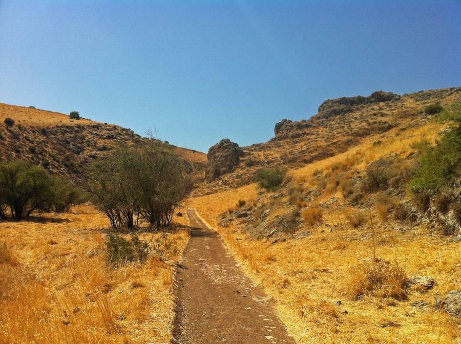 Jesus Trail | Ein Weg durch einen kleinen Canyon. Ausgetrocknetes gelbes Gras am Wegesrand