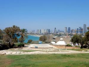 Tel Aviv | Blick auf die Skyline aus der Altstadt Jaffa aus einem grünen Park mit modernen Hochhäusern im Hintergrund