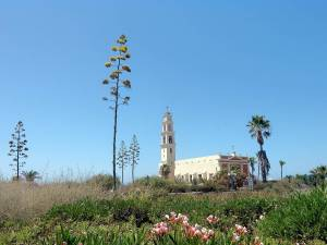 Tel Aviv | Sehenswürdigkeiten: Die Franziskanerkirche St. Peter in Jaffa auf einem grünen Hügel