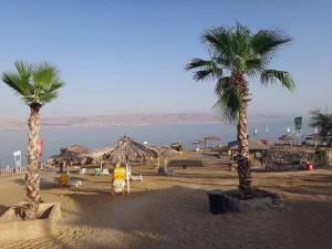 Totes Meer | Typisches Strandbad, entlang der Küste gibt es zahlreiche Strände zum Baden. Ein Strandbad mit Palmen und Sonnenschirmen, im Hintergund die Berge Jordaniens.