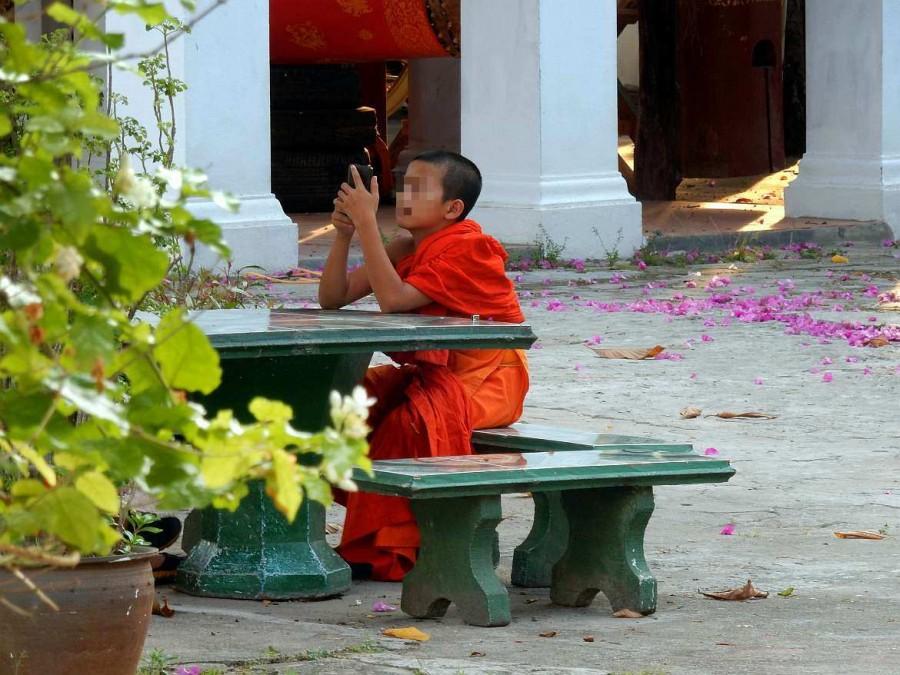 Kleiner Mönch mit seinem Handy