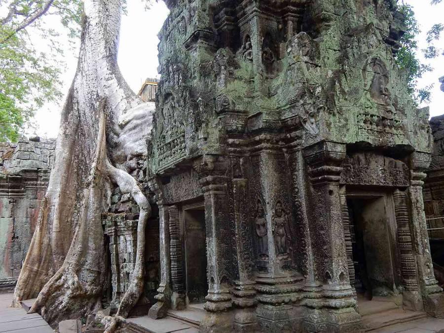 Kambodscha Angkor Wat | Preah Khan Tempel von Innen mit von Urwald überwucherten Mauern