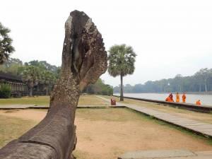 Kambodscha | Mönche vorm Eingang zum Tempel Angkor Wat Fluss