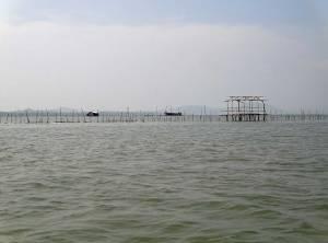 Kambodscha | Überfahrt nach Koh Thmei vom Koh Kchhang Fishing Village aus. Blick auf das offene Meer mit ein paar Wegweisern für Boote aus Holz