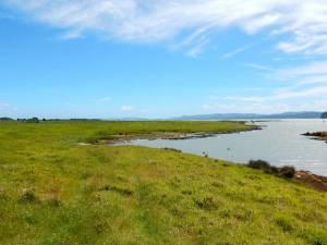 Neuseeland | Nordinsel, Panorama im Ambury Park nahe Auckland über grüne Wiesen auf das Meer