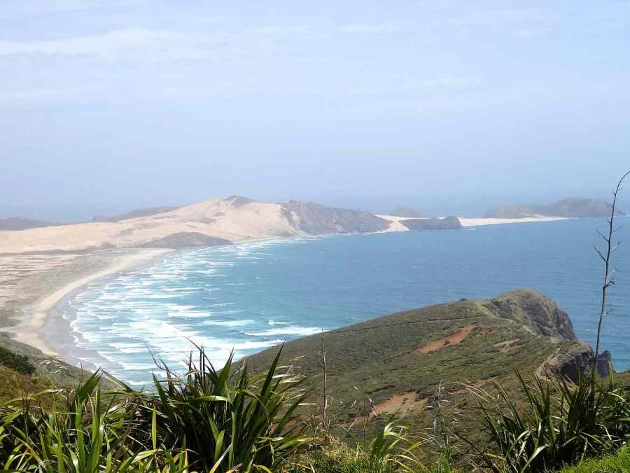 Neuseeland | Nordinsel, Cape Reinga auf dem Weg in die Bay of Islands. Blick auf einen Küstenabschnitt mit welligem aufgewühltem Meer