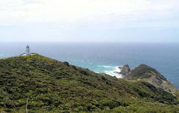 Neuseeland | Nordinsel, Hoher Norden, Leuchtturm am Cape Reinga & hoher Norden. Blick aus der Ferne auf den weißen Turm und die grün bewachsenen Klippen vor blauem Meer