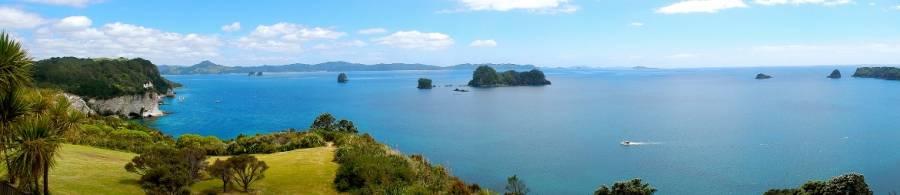 Neuseeland | Nordinsel, Panorama auf die Küste am Cathedral Cove in der Coromandel und das blaue Meer mit sattgrünen Wiesen bei Sonnenschein