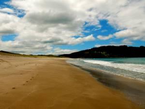 Neuseeland | Nordinsel, Hot Water Beach bei Ebbe in Hahei in der Coromandel. Blick auf den goldene Sandstrand, das türkisfarbene Meer und grüne Berge im Hintergrund bei blauem Himmel mit weißen Wolken
