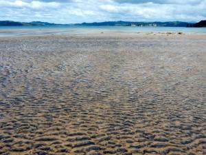 Neuseeland | Nordinsel, Strand in Hahei in der Coromandel. Blick auf das Meer bei Ebbe