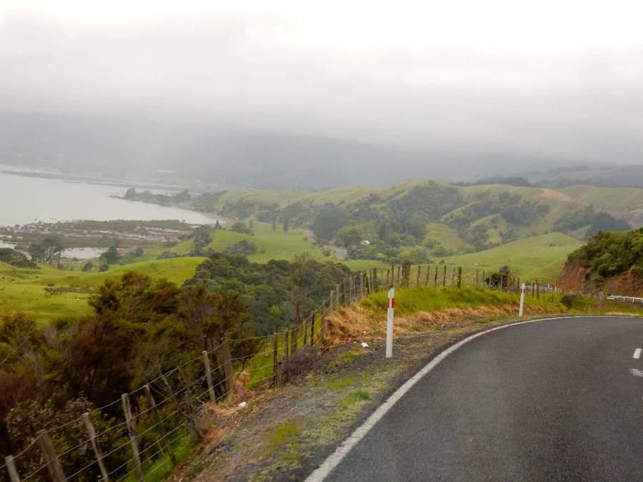 Neuseeland | Nordinsel, Strecke von Thames nach Coromandel Town bei Regen. Nebel über der Küste und einer Straße aus Serpentinen durch grüne Hügel