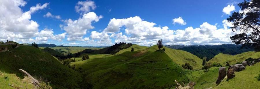 Nordinsel, Panorama in der Nähe des Hobbiton Movie Set auf sattgrüne Berge bei blauem Himmel