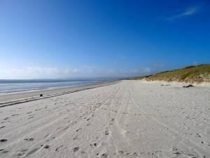 Neuseeland | Nordinsel, Strand Panorama Richtung Süden bei der Uretiti Campesite im hohen Norden. Blick auf kilometerlangen weißen Sandstrand, das Meer und die Dünen bei blauem Himmel