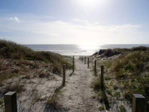 Neuseeland | Nordinsel, der Weg durch die Dünen zum Strand mit blick auf das Meer und die untergehende Sonne bei der Uretiti Campsite im hohen Norden