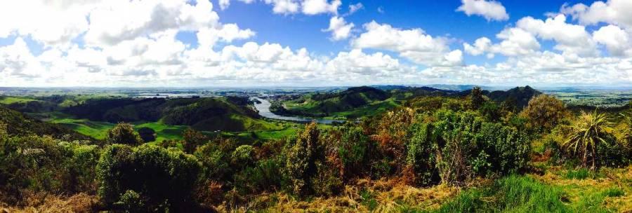 Neuseeland | Nordinsel, Panoramablick auf Taupo. Sattgrüne Landschaft, der Weikato River und Lake Taupo im Hintergrund bei blauem Himmel