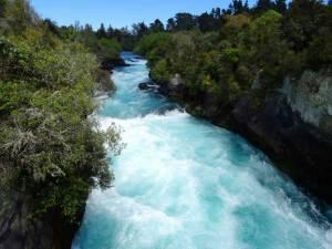 Neuseeland | Nordinsel, Stromschnellen des Waikato River in Taupo. Türkisfarbenes reißenden Wasser umgeben von sattgrünen Pflanzen