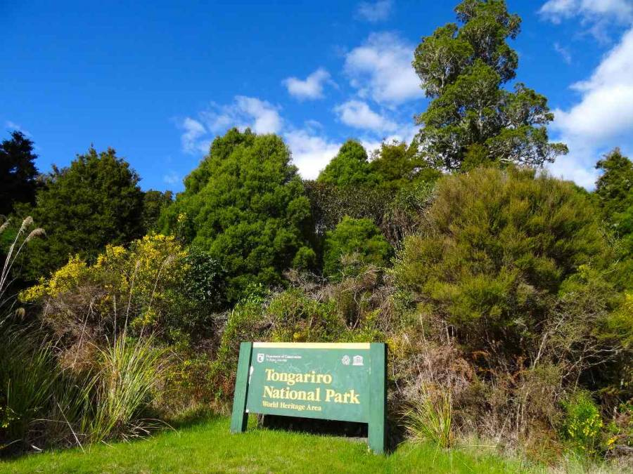 Neuseeland | Nordinsel, Tongariro National Park. Grün-gelbes Hinseisschild vor grünen Büschen und Bäumen