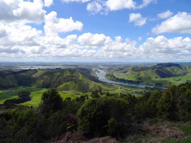 Neuseeland | Nordinsel, Panorama auf den Lake Taupo bei Turangi. Aussicht auf den Fluss, den See und grüne Hügellandschaft bei blauem Himmel und weißen Schäfchenwolken. Highlights und Sehenswürdigkeiten gibt es viele in der Region der Vulkane