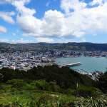 Neuseeland | Nordinsel, Ausblick vom Mount Victoria in Wellington auf die Stadt, den Hafen das Meer umgeben von Urwald. In unserem Hauptstadt-Guide gibt es Tipps zu Highlights, Sehenswürdigkeiten & zum Camping