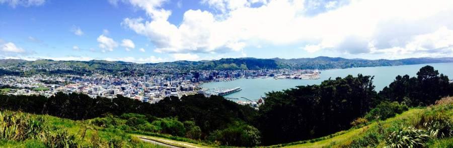 Neuseeland | Nordinsel, Panorama vom Mount Victoria in Wellington. Blick auf die Stadt, den Hafen und das Meer umgeben von grünen Wiesen und Urwald