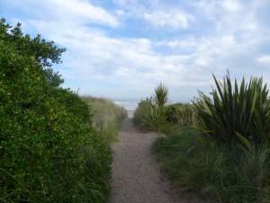 Neuseeland | Südinsel, Weg durch die Dünen beim Ocean View Recreation Reserve in der Nähe von Dunedin mit dem wellenreichen Meer am Horizont
