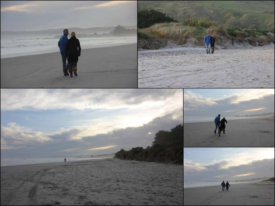 Neuseeland | Südinsel, Eindrücke des Ocean View Recreation Reserve bei Dunedin bei Sonnenuntergang