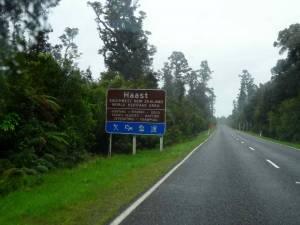 Südinsel, Haast Pass. Ein braunes Hinweisschild am Straßenrand der Strecke über den Haast Pass