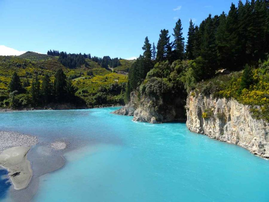 Neuseeland | Südinsel, Blick auf den Waitaki River auf der Inland Scenic Route. Türkisfarbenes Wasser im Fluss, mit Felsen und grünen Wiesen mit unzähligen gelben Blüten