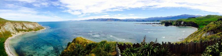 Highlights der Südinsel, Bucht beim Peninsula Walkway in Kaikoura. Blick auf das Meer und grün bewachsene Felsen