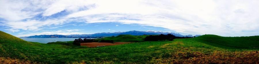Neuseeland | Südinsel, Panorama beim Peninsula Walkway in Kaikoura auf grüne Wiesen und schneebedeckte Berge