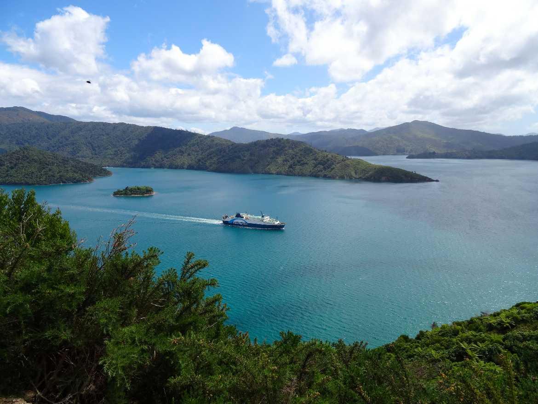 Neuseeland | Südinsel, bluebridge Fähre von Picton nach Wellington durch die Cook Strait aus Sicht des Queen Charlotte Sound